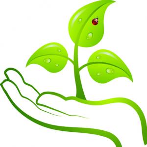 Bioenergieerlebnis